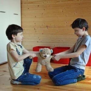 pozytywna-dyscyplina rodzenstwo
